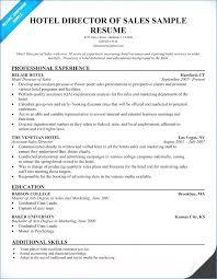 Sample Resume Of Sales Manager Igniteresumes Com