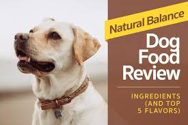 digging deeper into natural balance dog food