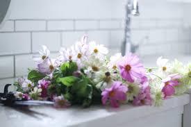 7 tips for growing a cut flower garden