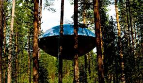 pete nelson. \u0027Treehouse Masters\u0027 Star Pete Nelson Visits Swedish Treehotel For New Show|Featured Image. \u0027 4