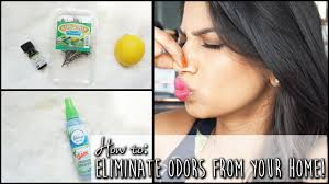 DIY: Make your house smell good! Eliminate home odors | Arshia's Makeup -  YouTube