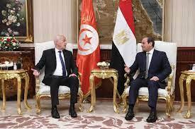 خلال زيارة سعيد للقاهرة.. مصر وتونس تنظران إلى ليبيا
