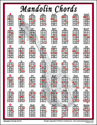 Easy Mandolin Chords Mandolin Chords Notebook Size