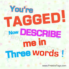 3 words that describe you one word that describes me essays custom paper writing service