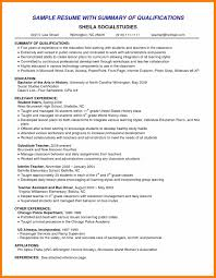8 Resumes Professional Summary Examples Activo Holidays