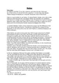 essay on holes by luis sachar gcse english marked by  page 1 zoom in