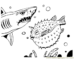 Small Picture Shark Coloring Page 03 Coloring Page Free Shark Coloring Pages