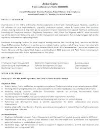 Resume Summary Statement Examples Customer Service Extraordinary Professional Summary For A Resume Professional Summary Sample For