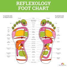 Reflexology Pressure Points Chart Foot Reflexology Chart Massageaholic