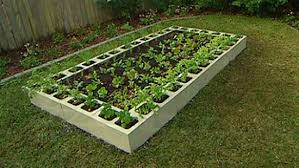 Small Picture Concrete Block Planters and Raised Beds Improvised Life