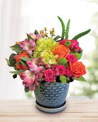 get well flowers in bloom flowers giftore arlington tina