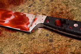 Resultado de imagem para imagem de faca que matou a mae