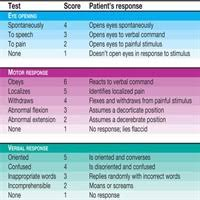 Head To Toe Assessment Sample Charting Simplifying Neurologic Assessment Nursing Made Incredibly Easy