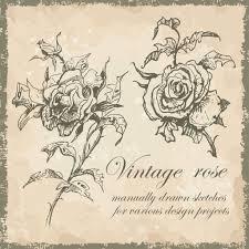 эскиз розы на руку рисованные эскиз руки роз векторное