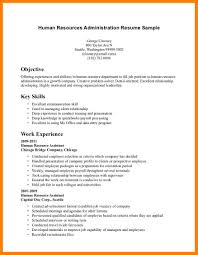 No Experience Resume Template Junior Accountant Home Uncategorized