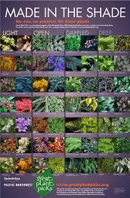 Container Gardening In ShadeContainer Garden Shade Plants