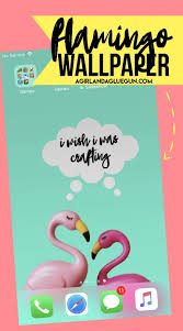Flamingo wallpaper for your phone - A ...