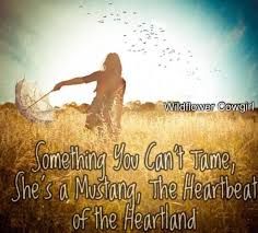 Cowgirl Quotes Custom Cowgirl Quote Cowgirl In A Field Southern Way Of Life Facebook