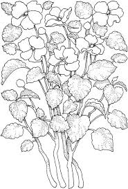 Small Picture Adult Intricate Coloring Pages Printable Flower Coloring Page