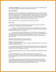 Chronological Resume Examples 2020 Free Executive Resume Samples 2018