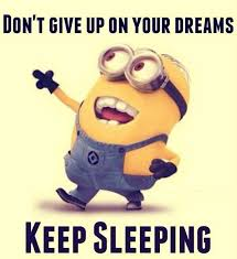 Funny Dream Quotes Best of Top 24 Funniest Minions Pictures Humor Funny Quotes And Searching