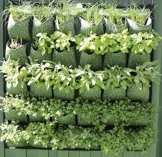 how to build a vertical garden. karen montgomery vertical garden how to build a f