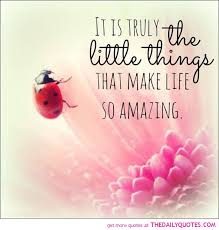 Amazing quotes and sayings