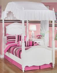 17 Cool Twin Bed With Canopy For Girls
