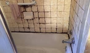 preventing bathroom mold mildew