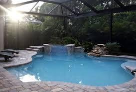 backyard salt water pool. \u003cp\u003eCarolina Hidalgo/Staff\u003c\/p\u003e\u003cp\u003eNaples Park Resident Cheryl Proughâ\u20ac™s Pool Features A Saltwater Chlorination System, Installed By Aloha Pools And Spa, Backyard Salt Water