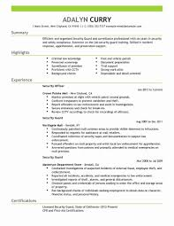 15 Fresh Gallery Of It Security Analyst Resume Sample Creative