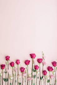 35 most por flower wallpapers for
