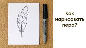 как нарисовать перо