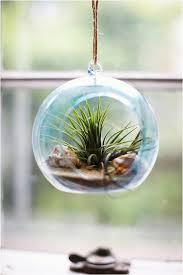 diy terrarium ornaments diy tinted glass beach terrarium fairy gardens