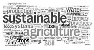 sample scholarship essay on agriculture in