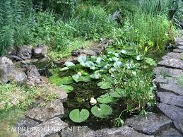 KOI Pond Backyard Pond U0026 Small Pond Ideas For Your Kentucky Small Ponds In Backyard