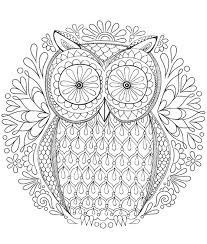 Owl Coloring Pages For Adults 3069 Adult Coloring Pages Printable
