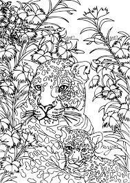 Coloriage Anti Stress Tigre Imprimer Sur Coloriages Info