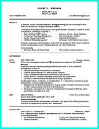 sample resume for national s director resume builder sample resume for national s director vp s sample resume executive resume writer vp director resume