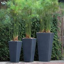 Modern Outdoor Planter Tall Modern Outdoor Planter Interior Design Ideas