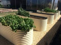 corrugated metal raised garden beds. Corrugated Raised Garden Beds Iron How To Build A Steel Bed . Metal