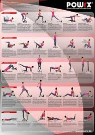 Whole Body Chart Buy Beginners Whole Body Vibration Exercise Chart Now With
