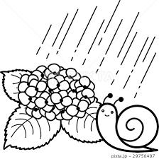 あじさい 雨 カタツムリ 白黒線画ぬり絵のイラスト素材 29750407 Pixta