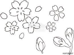 桜の花びらのイラストfotoliacom の ストック画像とロイヤリティフリー