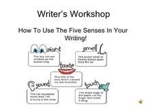 sensory essay co sensory essay