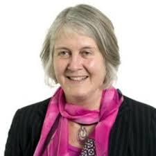 Hazel JOHNSON | Professor of Development Policy and Practice | The Open  University (UK), Milton Keynes | Department of Engineering and Innovation