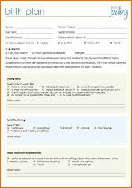 Customizable Birth Plan Writing A Birth Plan For C Section