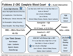 Complete Blood Count Normal Ranges Chart The Cbc Complete Blood Count Diagram Nursing Labs Nursing