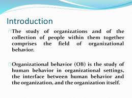 What Is Organizational Behavior Chapter 1 Organizational Behaviour
