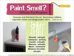 get rid of the paint smell with purification essential oil it seriously works i even used it to get rid of the smell of varnish